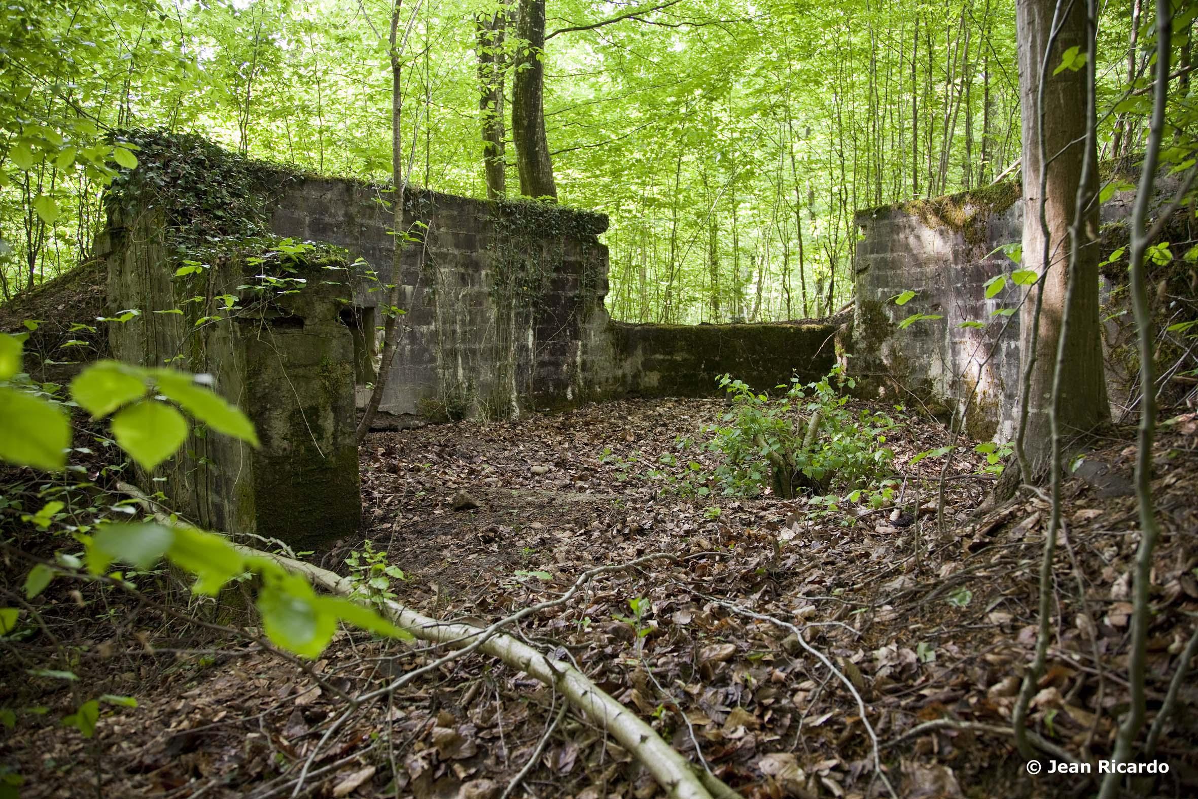 Betonierte Geschütz-Stellung inmitten des Waldgebietes