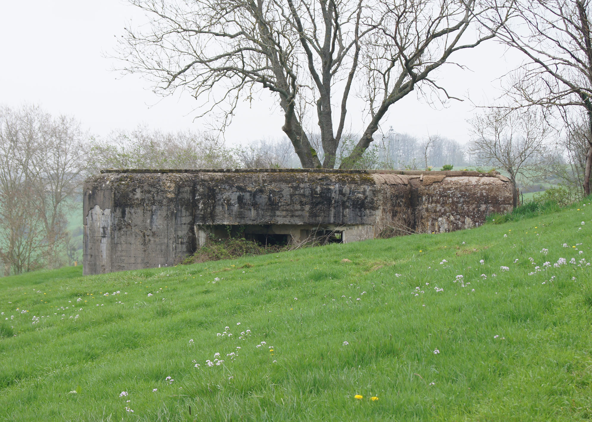 Artillerie-Kasematte auf dem Südufer der Maas bei Sedan