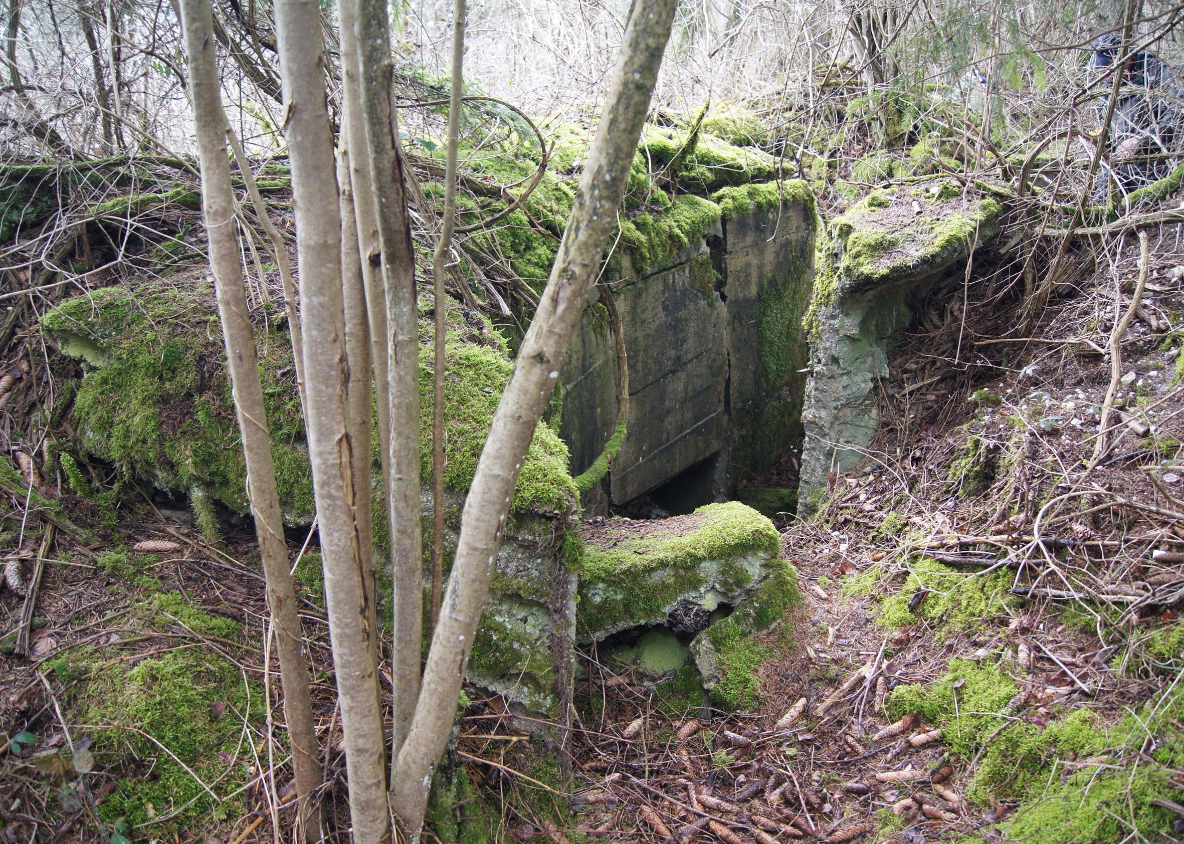 Deutsche betonierte Befestigungsanlagen am Kanonenberg